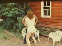 منفعل چه زنان, گی, دانلود فیلم سکس پارتی کمال